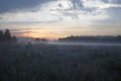 Morning sunrise landscape Royalty Free Stock Image