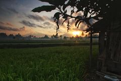 Morning. Before sunrise at magelang Royalty Free Stock Photography