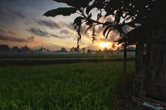 Morning. Before sunrise at magelang royalty free stock photography