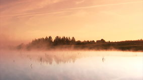 Morning sunrise. On the marsh stock footage