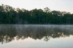 Morning sunrise mist on the Altamaha River. Beautiful mist and sunrise reflections during a crisp morning on the Altamaha River in Georgia Stock Photography