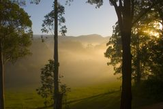 Morning Sunrise near Bellingen. Morning sun shines through the trees in the Promised Land, Bellingen, NSW, Australia Stock Photo