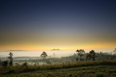 Morning sunrise in Thung Salaeng Luang national park Royalty Free Stock Photos
