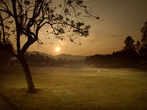 Morning sunrising. Sunrise in Chiang Mai park, Thailand Royalty Free Stock Photography