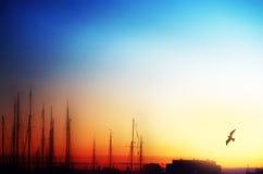 Morning sunset Stock Image