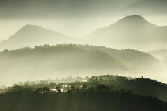 Morning sunshine with fog Stock Photo