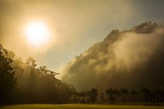 Morning sunshine over the misty forest. And mountains Stock Photography
