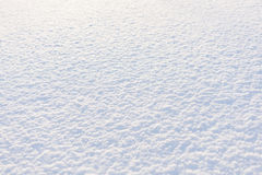 Morning sunshine snow field background Stock Image