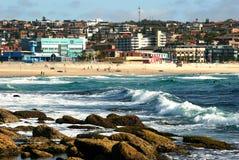 Morning Surf Royalty Free Stock Image