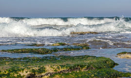 Morning surf on the Mediterranean sea Stock Images