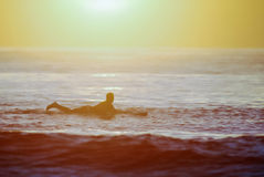 Morning surf Royalty Free Stock Images