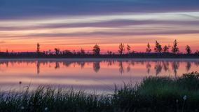 Morning in the swamp motion timelapse stock footage