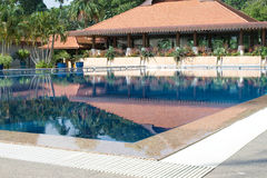 Morning swim. Undisturbed resort pool early in the morning stock photography