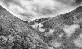 Morning in Tarcu Mountains Stock Photos