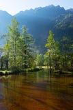 Morning TASHIROIKE Pond Royalty Free Stock Photography
