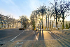 Morning in Tashkent Royalty Free Stock Image