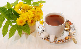 Morning tea. In the summer in a garden Stock Images