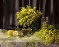 The morning tea Stock Images
