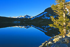 Morning at Tioga Lake. Early morning with reflections at Tioga Lake in the high Sierras, California Stock Photos