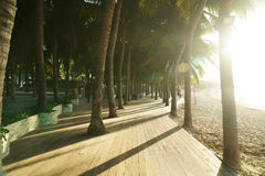 Morning tourist embankment with palm trees along beach at Dadonghai Bay on Hainan Island, China Stock Photo
