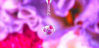 Abstract background, falling drop of water stock image