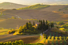 Morning in the Tuscan hills. Pienza city Stock Photography