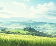 Morning in Tuscany, Italy Royalty Free Stock Images