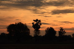 Morning twilight of countryside field. Royalty Free Stock Photos