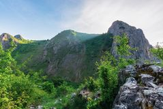 Morning in the Valisoara gorge, romania royalty free stock image