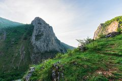 Morning in the Valisoara gorge, romania stock photography