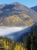 Morning Vapor. Early morning fog at high elevation in the Colorado Rockies royalty free stock images
