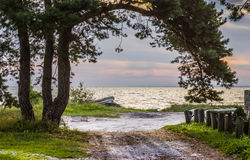 Morning view on Baltic sea, Latvia Royalty Free Stock Photography