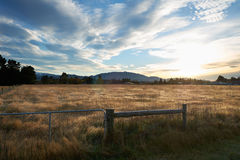 Morning view of brown meadow in Springfield, South Island, New Z Royalty Free Stock Photography