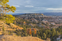 Morning View Bryce Canyon National Park. Morning view from Sunrise Point at Bryce Canyon National Park in Southern Utah Stock Images