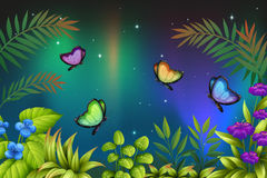 A morning view with butterflies. Illustration of a morning view with butterflies Stock Photos