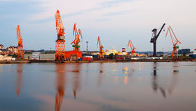 Morning view of   cranes  in  seaport. Stock Photos