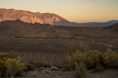 Morning view of hills, mountains, desert valley, wildflowers Eastern Sierra Nevada mountains, C stock photos