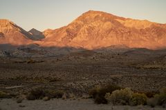 Morning view of hills, mountains, desert valley, wildflowers Eastern Sierra Nevada mountains, C stock photography