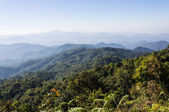 Morning View from Mountain, Pha Daeng National Park in Chiangmai Stock Photo