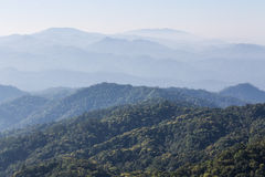 Morning View from Mountain, Pha Daeng National Park in Chiangmai Royalty Free Stock Photo