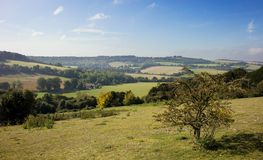 Morning view over a Chiltern landscape. Mid-morning view of a landscape in the Chilterns hills in Oxfordshire, England, in early autumn Royalty Free Stock Photos