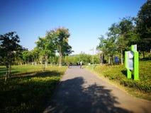 Morning view in wuhu shenshan garden Stock Photos