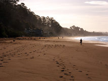Morning walk on the beach. A wide sandy beach in the morning hours with footsteps in the sand. Few people power walk Stock Image