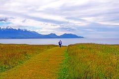 Morning walk on a coastal meadow Stock Image