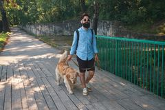 Morning walk with dog. Young man with his labrador retriever on the wood bridge with trees and sun light in background royalty free stock image