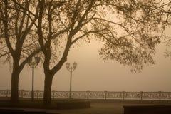 Morning walk in the foggy park of Chernigov. View from Val park in Chernigov. Ukraine Stock Photo