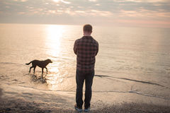 Morning walk of man an dog. Young caucasian male walking with dog on the morning beach, sunset on the sea or ocean and man with black labrador puppy Royalty Free Stock Image