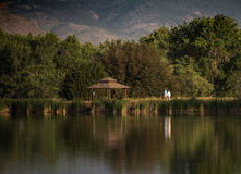 Morning Walk. An older couple taking a morning walk around a lake with reflection Stock Image