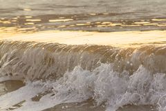 Morning waves Royalty Free Stock Image