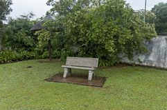 Morning wet garden after rainy night in Sabie stock images